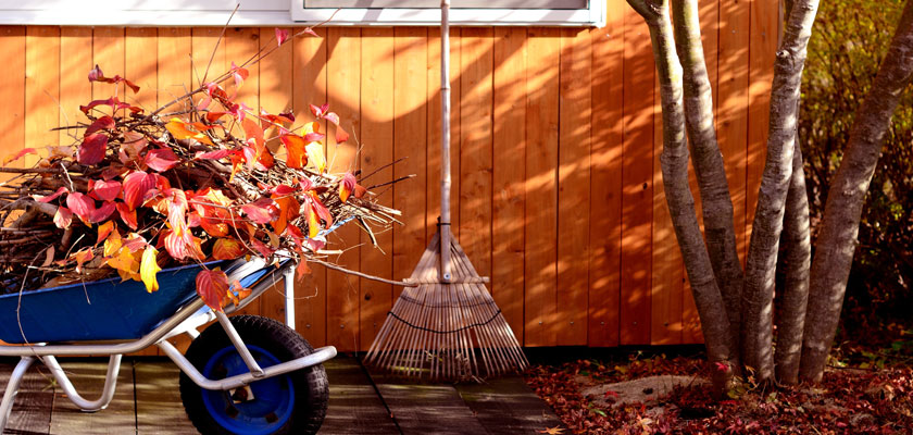 Autumn Home Maintenance: 3 Essential Monthly Tasks
