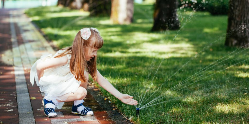 Follow our irrigation sprinkler checklist and how to test your sprinkler. | SHW Blog